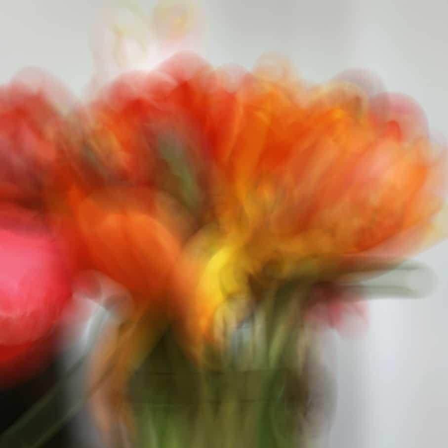 2. FLOU-Tulipes 3C
